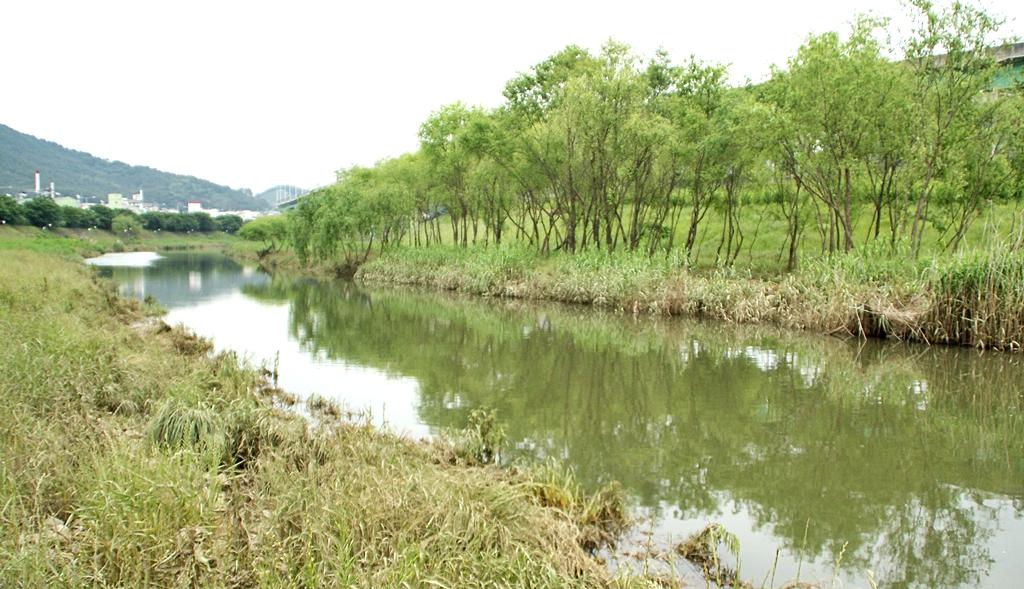 수영강 풍경