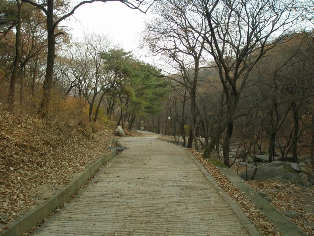 [2010-11-19] 강화도 마니산.. (부서워크샵)
