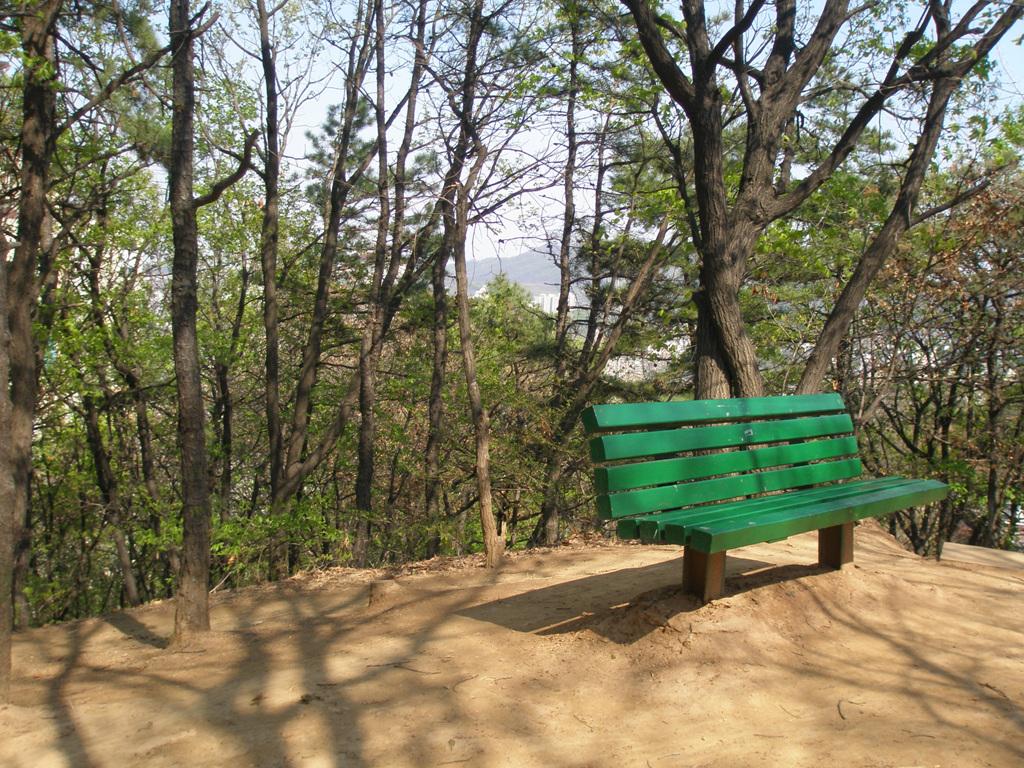 [2010-04-25] 관악산 뒷자락