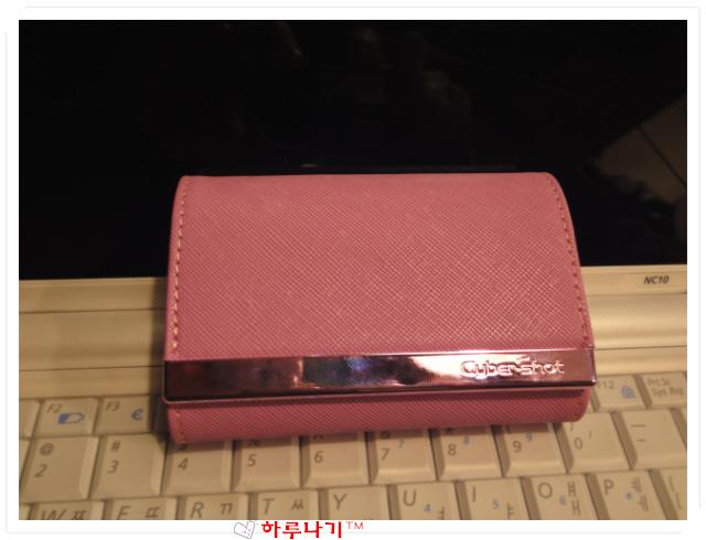LCS-CSVA 핑크색 3